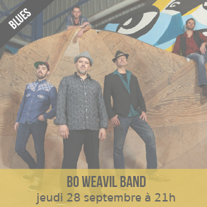 bo weavil band - PASSÉ